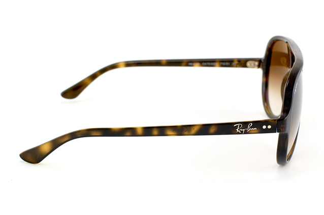 Ray-Ban Cats 5000 RB 4125 710/51 perspektiv