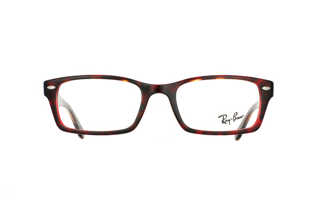 Ray-Ban RX 5206 2444 perspective view