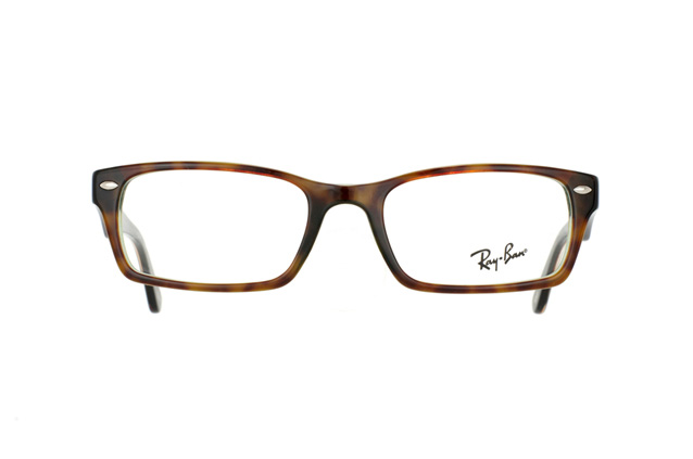 Ray-Ban RX 5206 2445 perspective view