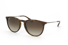 Ray-Ban Erika RB 4171 865/13 small