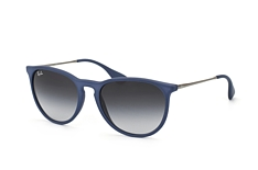Ray-Ban Erika RB 4171 60028G small