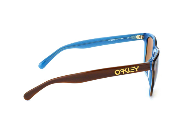 Oakley Frogskins LX OO 2043 03 perspective view