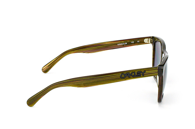 Oakley Frogskins LX OO 2043 09 perspective view