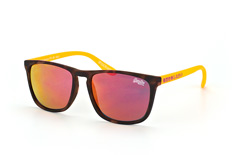 Superdry Shockwave 170, Square Sonnenbrillen, Havana