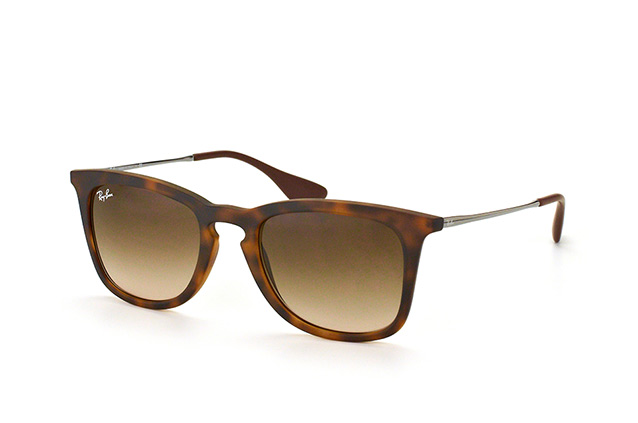 Ray-Ban RB 4221 865/13 perspective view