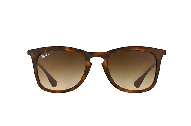 Ray-Ban RB 4221 865/13 vista en perspectiva