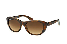 Ray-Ban RB 4227 710/13 small