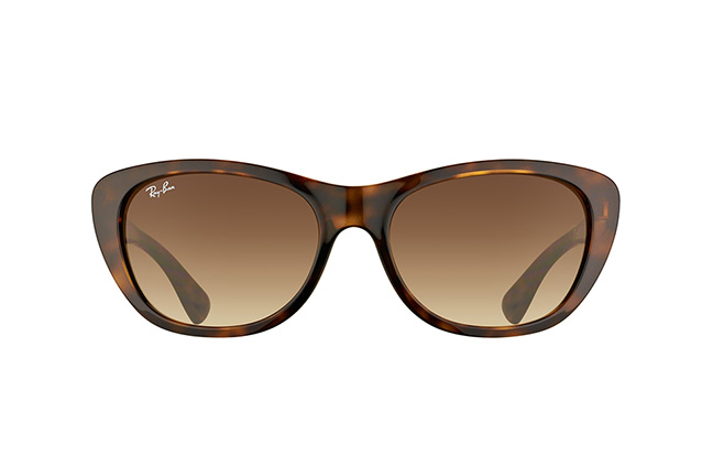 Ray-Ban RB 4227 710/13 perspective view