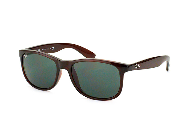 Ray-Ban Andy RB 4202 714/71 perspective view