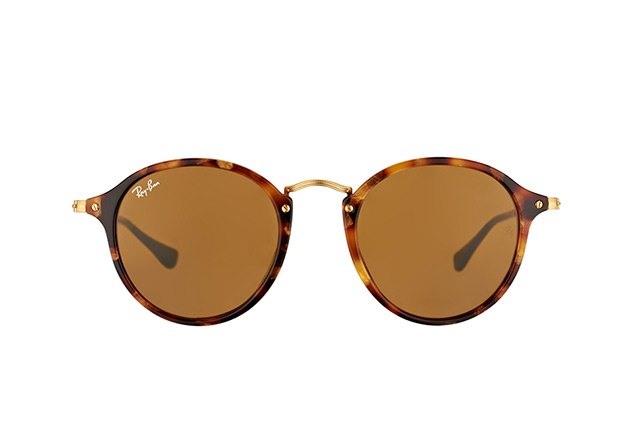 Ray-Ban RB 2447 1160 vista en perspectiva