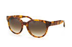 Calvin Klein CK 4289S 282 Havana / Gradient brown perspective view thumbnail