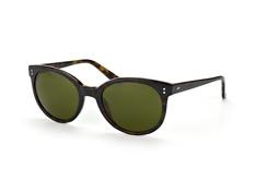 marc-o-polo-eyewear-506098-63-round-sonnenbrillen-havana