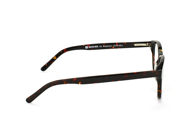 Mister Spex Collection Anderson 1079 001 vista en perspectiva