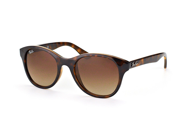 Ray-Ban RB 4203 710/13 perspective view