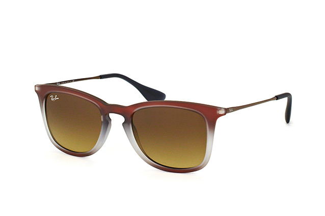 Ray-Ban RB 4221 6224/13 perspective view