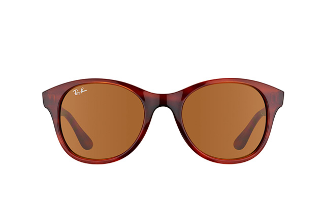 Ray-Ban RB 4203 820/73 perspective view