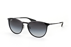 Ray-Ban Erika Metal RB 3539 002/8G small