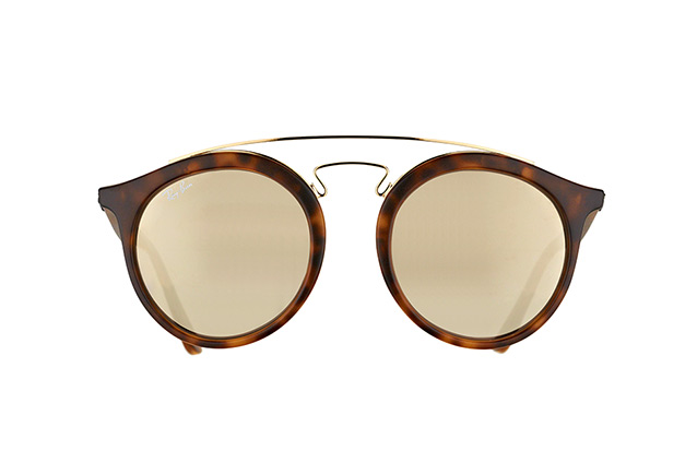 Ray-Ban RB 4256 6092/5A large Perspektivenansicht