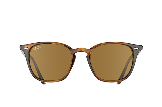 Ray-Ban RB 4258 710/73 perspective view