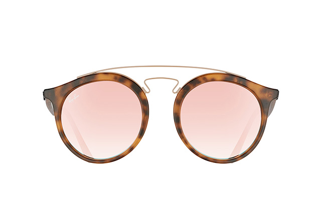 Ray-Ban RB 4256 6267/B9 large Perspektivenansicht