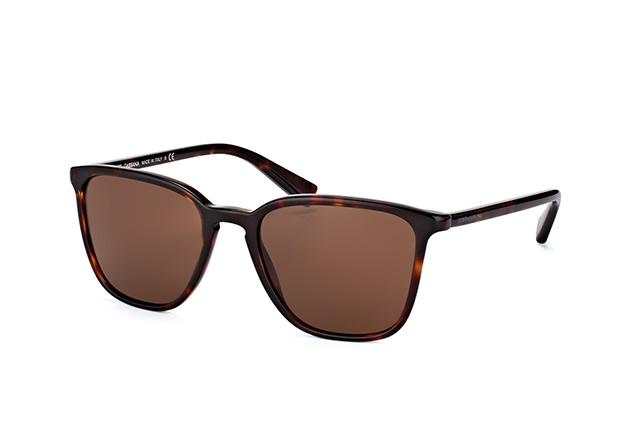 Dolce&Gabbana DG 4301 502/73
