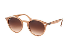 Ray-Ban RB 2180 6166/13 large liten