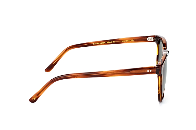 CO Optical Aaron 2048 001 vue en perpective