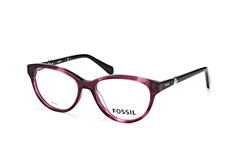 Fossil FOS 6085 0CC small