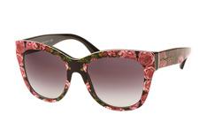 dolce-gabbana-dg-4270-3127-8g-butterfly-sonnenbrillen-rosa