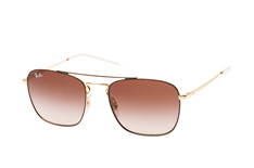 Ray-Ban RB 3588 9055/13 small