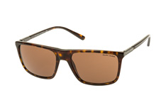 Ralph Lauren RL 8161 5003/73 small