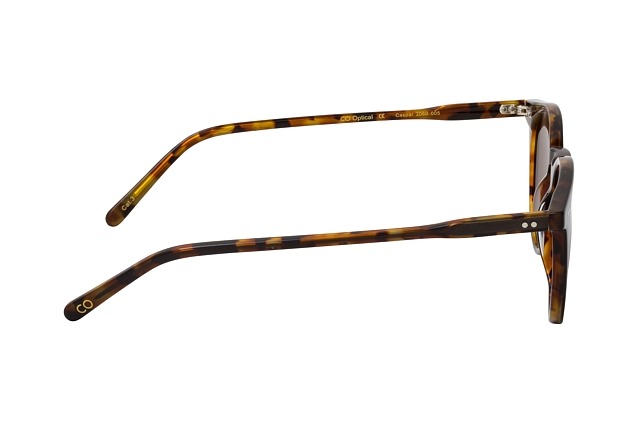 CO Optical Caspar 2060 005 vue en perpective