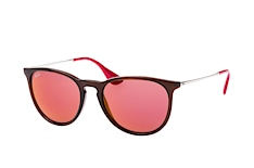 Ray-Ban Erika RB 4171 6339/D0 small