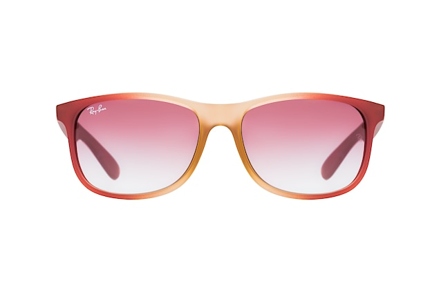 Ray-Ban Andy RB 4202 63698H perspective view