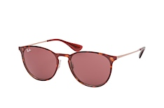 Ray-Ban Erika Metal RB 3539 9133/75 small