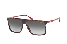Carrera Carrera 172/S O63 small