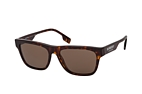 Burberry BE 4293 3002/3 Havana / Brown perspective view thumbnail
