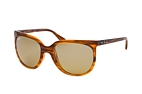 Ray-Ban Cats 1000 RB 4126 820/3K Havana / Gradient grey perspective view thumbnail