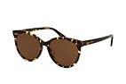 Bottega Veneta BV 1022SK 006 Havana / Brown perspective view thumbnail