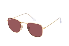 Ray-Ban Frank RB 3857 9196AF petite