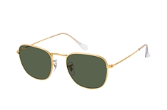 Ray-Ban Frank RB 3857 919631 klein