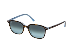 Ray-Ban Leonard RB 2193 13163M small
