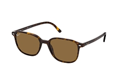 Ray-Ban Leonard RB 2193 902/57 small
