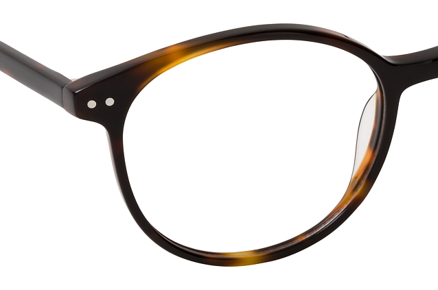 CO Optical Eli 1054 R21 perspective view
