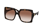 Gucci GG 0876S 001 Havana / Brown perspective view thumbnail