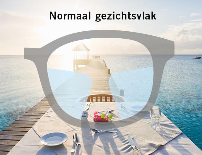 020bc9107161db Online Multifocale brillen bij Mister Spex kopen