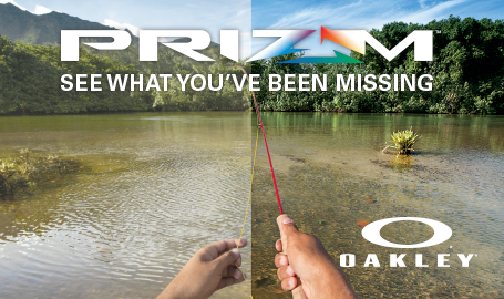 Prizm shallow water